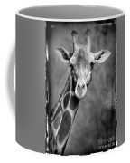 Giraffe Face In Black And White Coffee Mug