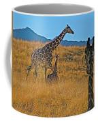 Giraffe Family In Living Desert Museum In Palm Desert-california Coffee Mug