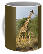 Giraffe From Tanzania Coffee Mug