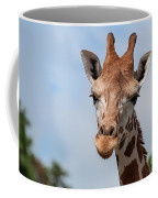 Giraffe Portrait Coffee Mug