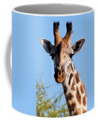 Giraffe Portrait Close-up. Safari In Serengeti. Coffee Mug