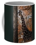Giraffe Posing Coffee Mug