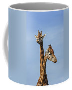 Giraffes 1 Coffee Mug