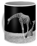 Giraffe's Coffee Mug