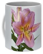 Girosa Lily Coffee Mug by Sandy Keeton