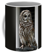 Give A Hoot Coffee Mug by John Haldane