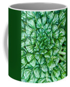 Glabrous Leaves Coffee Mug