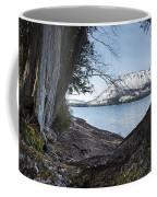 Glacier Park View Coffee Mug
