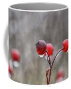Glazed Coffee Mug