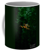 Gliding Frog In Flights Coffee Mug