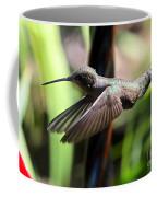 Gliding Hummingbird Coffee Mug