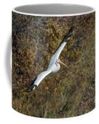 Gliding Pelican Coffee Mug