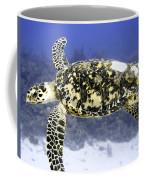 Gliding Sea Turtle Coffee Mug