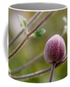 Globe Flower Bud Before The Bloom Coffee Mug