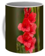 Glorious Glads Coffee Mug