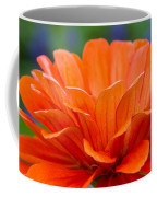 Glorious Orange  Coffee Mug