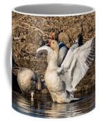 Glorious Snow Goose Coffee Mug