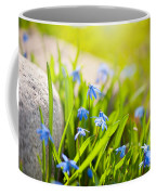 Scilla Siberica Flowerets Named Wood Squill  Coffee Mug