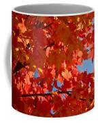 Glowing Fall Maple Colors 3 Coffee Mug