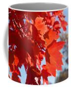 Glowing Fall Maple Colors 4 Coffee Mug