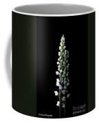 Glowing Goodyera Pubescens Coffee Mug