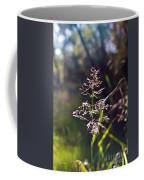 Glowing Grass In Palo Duro Canyon 100613.02 Coffee Mug