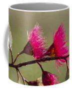 Glowing In The Afternoon Sun Coffee Mug