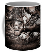 Gnarly Limbs At The Ashley River In Charleston Coffee Mug by Susanne Van Hulst
