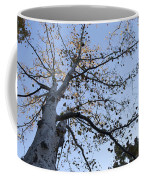 Go Climb A Tree Coffee Mug