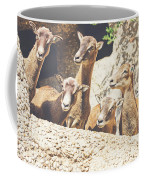 Goats On A Rock Coffee Mug
