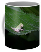 God's Tiny Tree Frog Coffee Mug