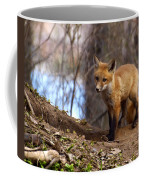 Going To The Den  Coffee Mug by Thomas Young