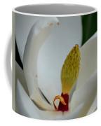 Gold Centered Magnolia Coffee Mug
