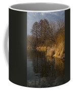 Golden Afternoon Reflections Coffee Mug