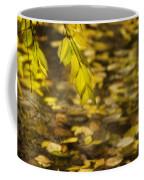 Golden Autumn Colour Foliage On Rainy Pond Coffee Mug