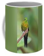 Golden-breasted Puffleg Coffee Mug