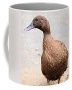 Golden Brown Feathers Coffee Mug