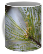 Golden Catkins Of The Great Pine Coffee Mug