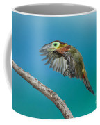 Golden-collared Toucanet Coffee Mug