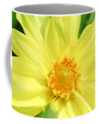 Golden Daisy Coffee Mug