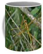 Golden Dragonfly At Rest Coffee Mug