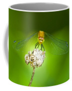 Golden Dragonfly On Perch Coffee Mug