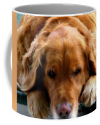 Golden Dreams Coffee Mug by Karen Wiles