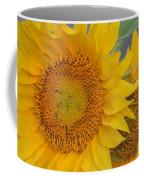 Golden Duo - Sunflowers Coffee Mug