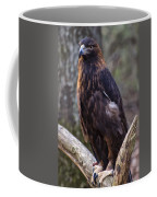 Golden Eagle 2 Coffee Mug