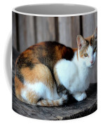 Golden Eyed Ferrel Coffee Mug