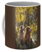 Golden Goldens - Golden Retriever Brothers - Casper Mountain - Casper Wyoming Coffee Mug