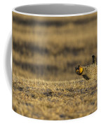 Golden Light On The Prairie Coffee Mug by Thomas Young