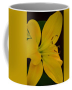 Golden Lily Glow Coffee Mug