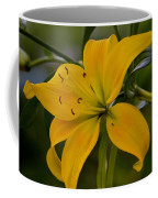 Golden Lily Sway 2013 Coffee Mug